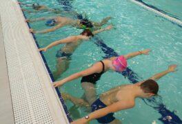 Výuka plavání (ŠSK)